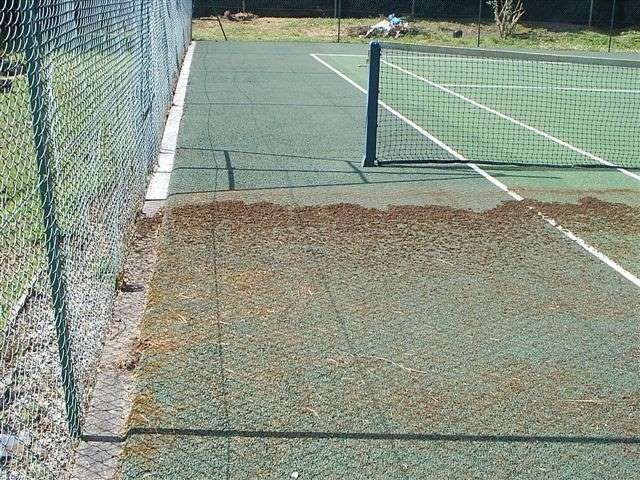 Tennis Courts - Before