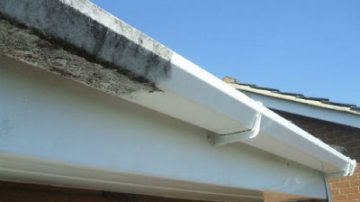 Fascia, Soffit and Gutter Cleaning